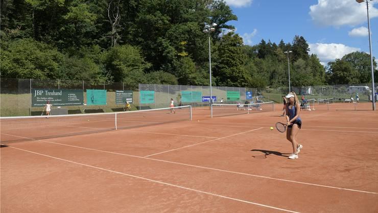 Der Tennisclub Engstringen in Oberengstringen ist einer von neun Vereinen, die im Limmattal um Tennisbegeisterte buhlen.