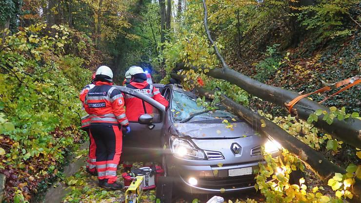Ein Mann aus der Schweiz wurde am Sonntag im deutschen Schliengen schwer verletzt, als ein umstürzender Baum sein Auto traf.