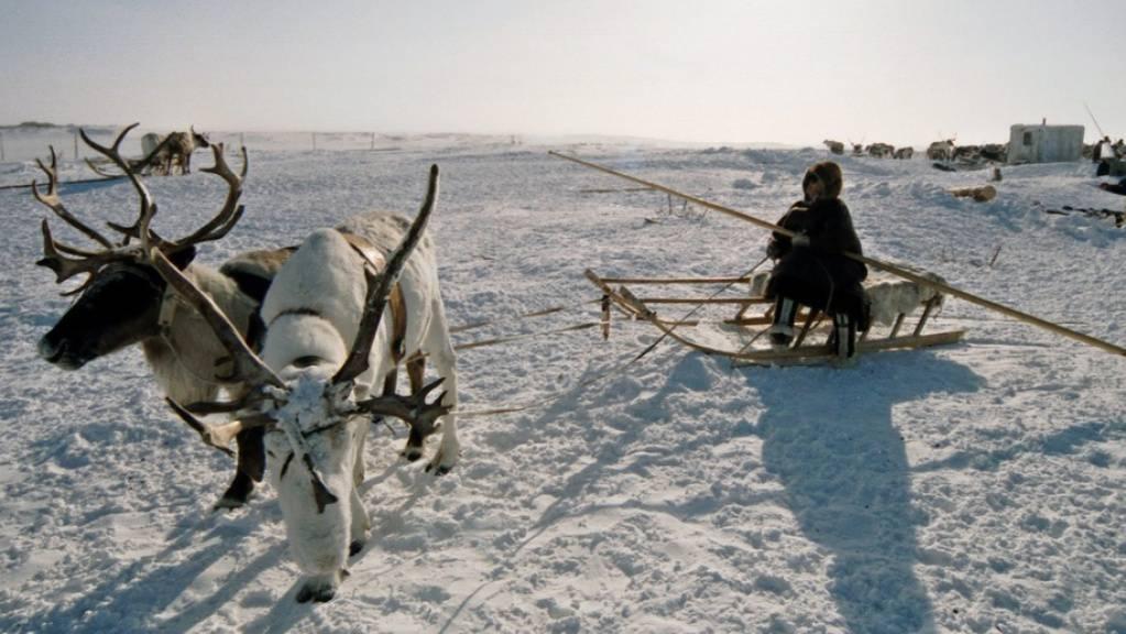 Die Taimyr-Halbinsel im Norden Sibiriens ist eines von zwei russischen Permafrost-Gebieten, in denen die Hitzewelle zur erhöhten Freisetzung von klimaschädlichem Erdgas führt (Archivbild).