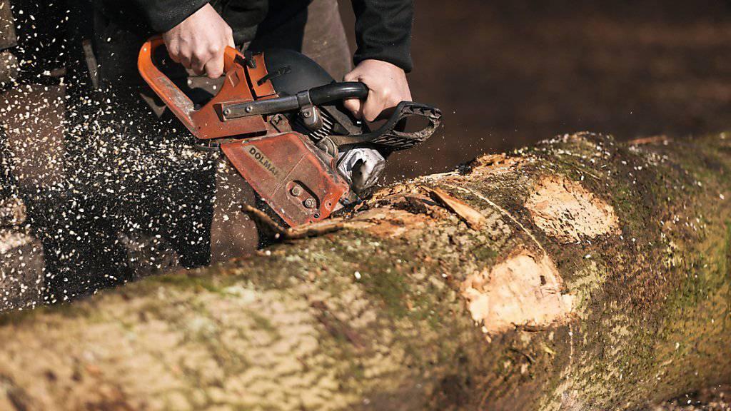 Im Vergleich zu anderen Rohstoffen hat Holz viele Umwelt-Vorteile. Noch wird das Potenzial aber nicht ausgeschöpft, stellen ETH-Forschende fest.