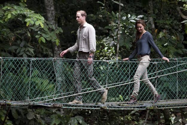 Und hier turnt man sich den Ärger weg: Kate und William im Regenwald von Borneo.