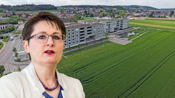Kein Land für Asylunterkunft: Der Rothrister Gemeinderat will nicht, dass auf diesem Grundstück eine Asyl-Grossunterkunft entsteht.