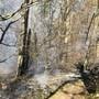 Waldbrand in Balsthal