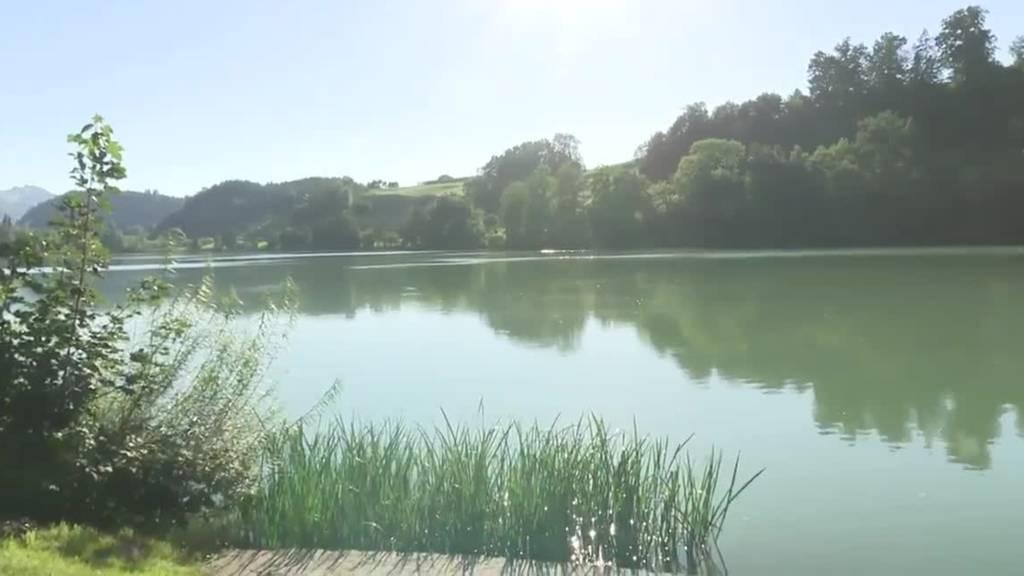 Nach Vergiftungen am Neuenburgersee: Ist Baden im Rotsee gefährlich?