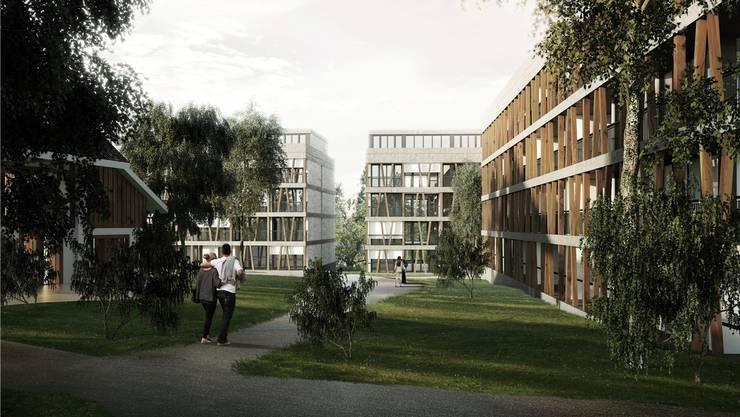Die neuen Wohnungen mit den Holzelementen nehmen das Thema des historischen Bauernhauses (links) auf. Visualisierung/zvg