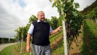 Schöne Trauben: Im Döttinger Weinberg zeigt Rebbaukommissär Peter Rey den erfreulichen Behang.