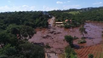 TÜV Süd hatte den gebrochenen Damm in Brasilien erst 2018 geprüft – und damals keine Mängel feststellen können. Inzwischen sind 84 Todesopfer bestätigt, weitere werden befürchtet.