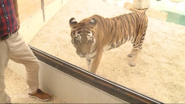 Siky Wildtierpark feiert Eröffnung