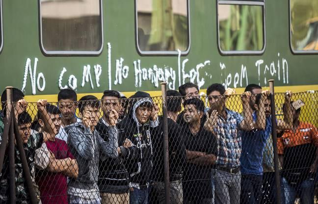 Flüchtlingselend in Osteuropa