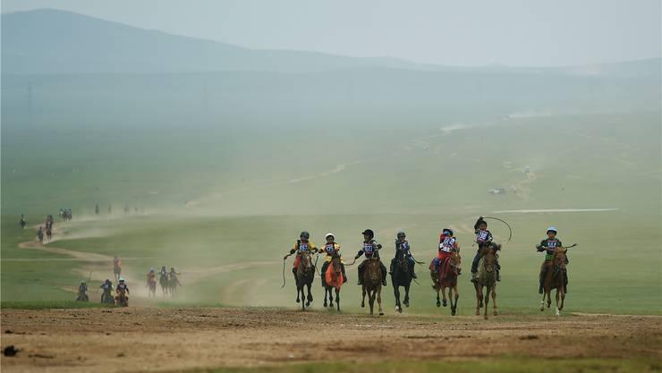 Wer mit den schnellsten Tieren die Pferderennen gewinnt, erntet Ruhm und Ehre.