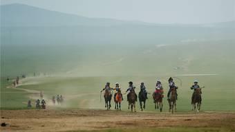 Glücklich werden beim mongolischen Nomaden
