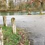 Ausflugsziel an der Reuss in Fischbach-Göslikon: Parkplatzbeschränkung und Fahrverbot an der Sandbank sind in die Wege geleitet.