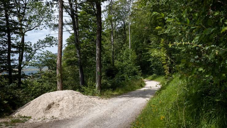 Steter Unterhalt in den Wäldern ist essenziell: Ein Waldweg oberhalb von Oensingen.