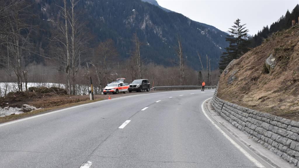 Hirschtier kracht in Quad – Fahrer verletzt