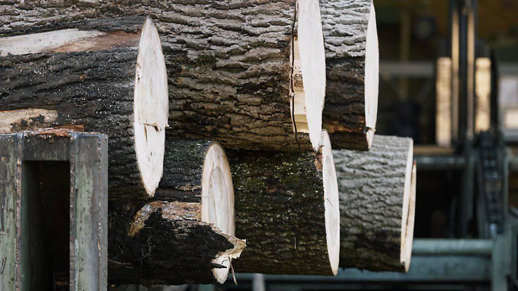 Im Sägewerk werden die Stämme entrindet. Rindenabfälle Schweizer Nadelhölzer könnten künftig zur Herstellung von Klebstoffen dienen. (Symbolbild)