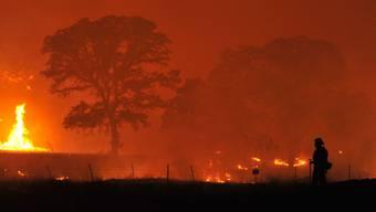 Gespenstischer Anblick für einen Feuerwehrmann in Kalifornien: Die Waldbrände an der US-amerikanischen Westküste sind weiterhin ausser Kontrolle.