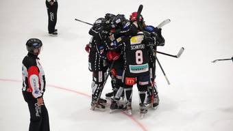 Eishockey: 1.Liga, 8. Runde, Red Lions Reinach - Argovia Stars (27.10.19)