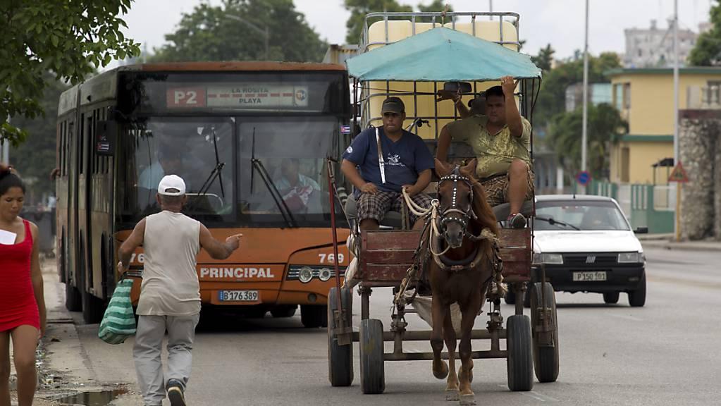 Wegen einer Energiekrise im Land benutzen Kubaner zum Pendeln wieder vermehrt Pferde. (Archivbild)