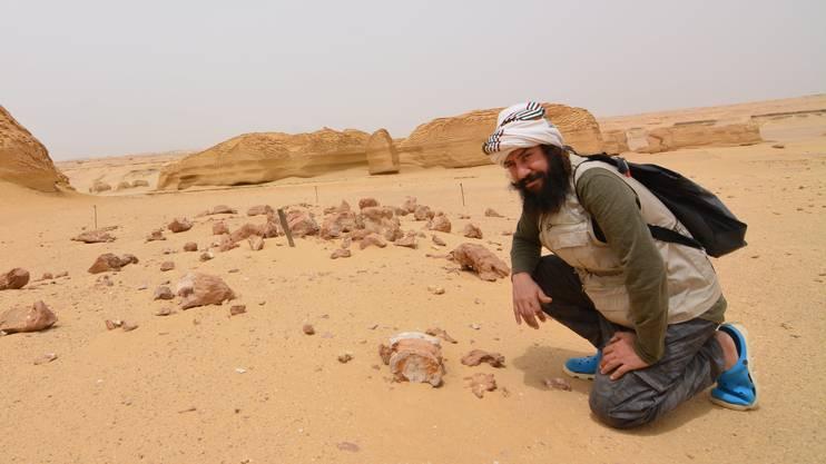 Das «Tal der Wale» gehört zum Naturschutzgebiet Wadi el-Rayan, welches seit 1989 besteht.