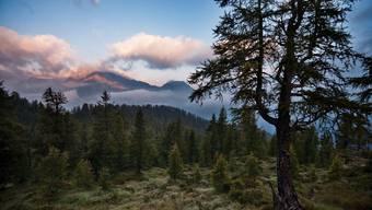 Graubünden Tessin Nationalpark