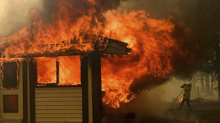 In Australien sind sechs Feuerwehrleute bei einem Unfall im Einsatz gegen die Buschfeuer schwer verletzt worden. Ihr Löschfahrzeug verunglückte. (Symbolbild)