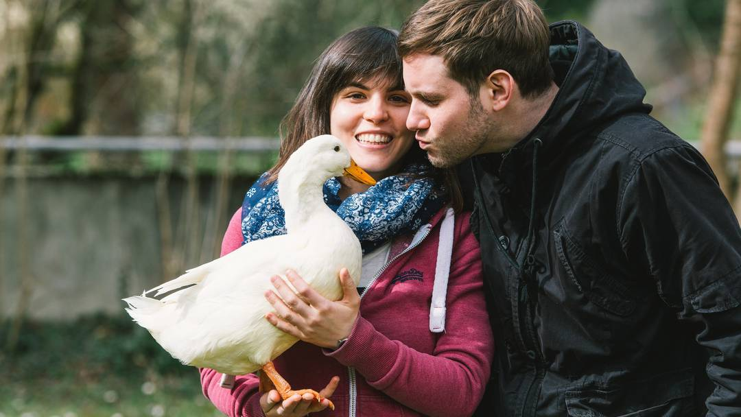 «Das ist einfach brutal»: Antonella Laino und Philippe Meier trauern um Ente Bella, die sie durch ihr halbes Leben begleitet hat.