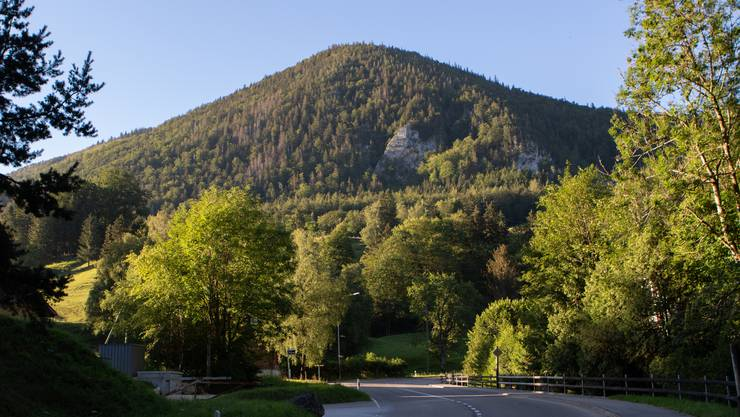 Blick von Gänsbrunnen auf die Nordseite der Hasenmatt: 724 Höhenmeter auf 12,7 Kilometern trennten mich vom Gipfel.