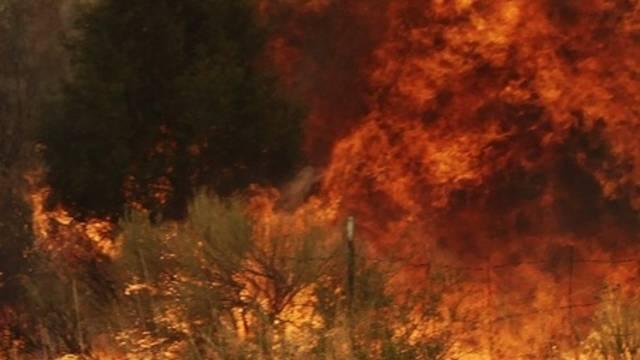 1700 Truthennen wurden Opfer der Flammen (Archiv)