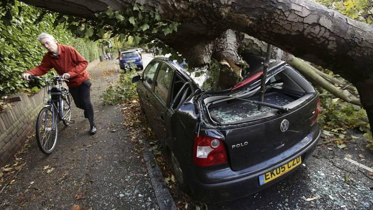 In Hornsby in der Nähe von London ist ein Baum auf ein Auto gefallen.