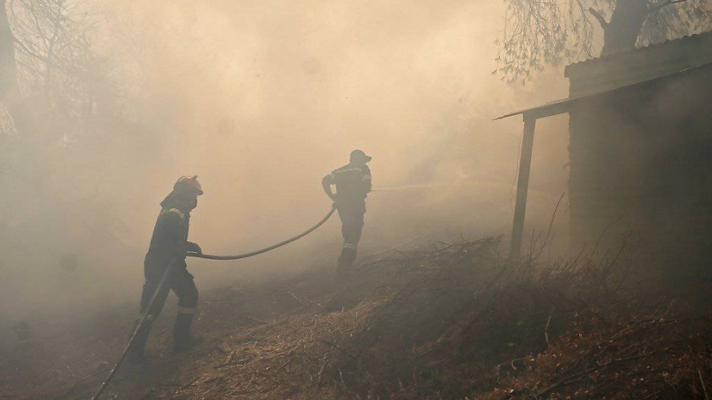 In Griechenland werden an mehreren Orten Brände bekämpft. (Archivbild)