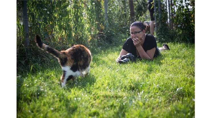 Nicole Hollenstein gibt den Tieren Zeit für ihren Schnappschuss.