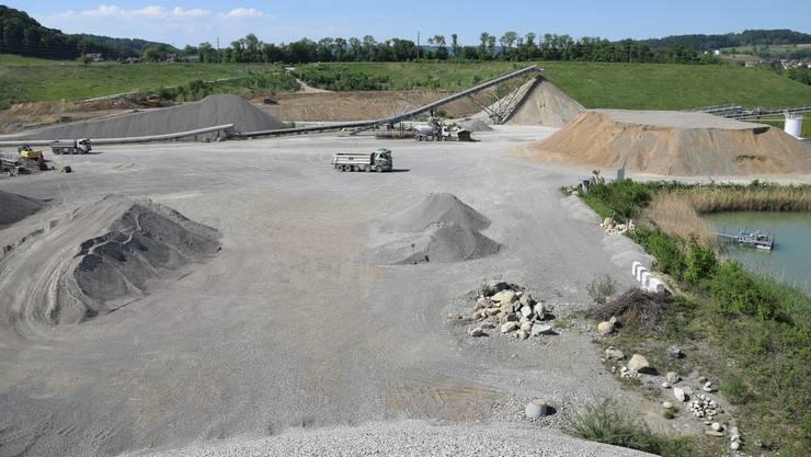 Die Kiesvorräte im heutigen Abbaugebiet sind bald erschöpft. Die Holcim Kies und Beton AG plant eine Erweiterung.