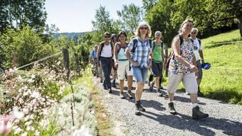 Leserwandern 9. Etappe: Von Menziken nach Schöftland
