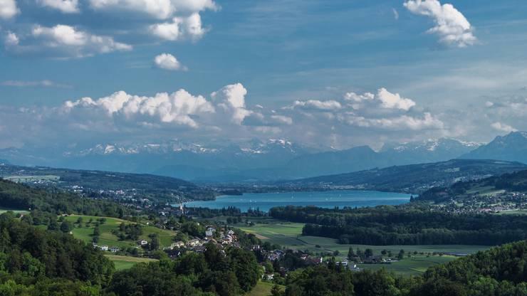 Der Hallwilersee und die Alpen. Gesehen am 1. Juni 2014 vom Esterliturm in Lenzburg aus.