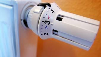 Der Schnitzelbunker soll Liegenschaften in der Nähe von Aetingen mit Wärme versorgen. (Symbolbild)