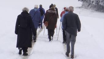 Einzig die Wandergruppe des Reussparks Niederwil verzichtet wegen der Kälte auf die geplanten Aktivitäten am Wochenende. liz/archiv