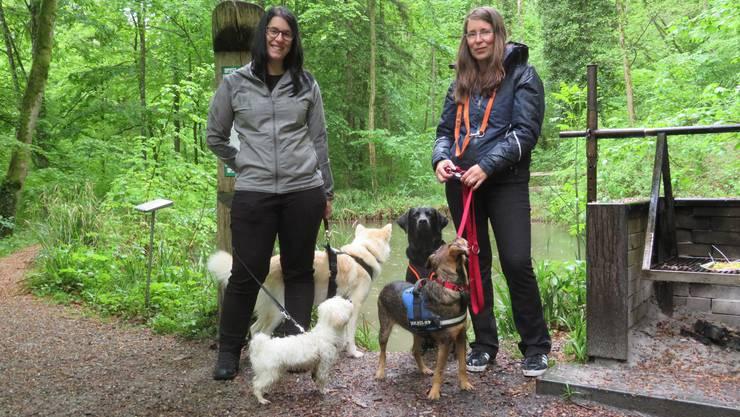 Hundebetreuerin Sabine Güttge (rechts) und Mitarbeiterin Sabine unterwegs mit vier Hunden.