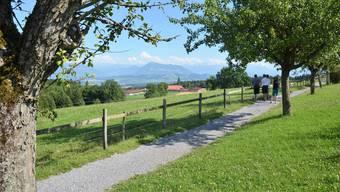 15. Etappe: 12,9 Kilometer von Bettwil nach Brunnwil.