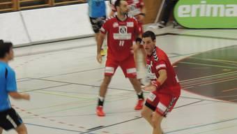 Die Endinger konnten auswärts gegen HSG Pilatus mit sechs Toren Vorsprung gewinnen.