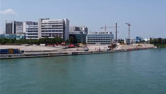 Für die neuen Gebäude des Novartis-Campus am Rheinbord wird ein Netz von Erkälte-Sonden gebohrt