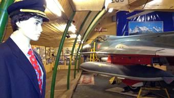 Die Sammlung von Arx in einem Hangar auf dem Euro-Airport.