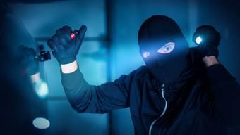 Die von den Hausbewohnern alarmierte Polizei nahm mit mehreren Patrouillen eine Umgebungsfahndung nach den Einbrechern auf. (Symbolbild)
