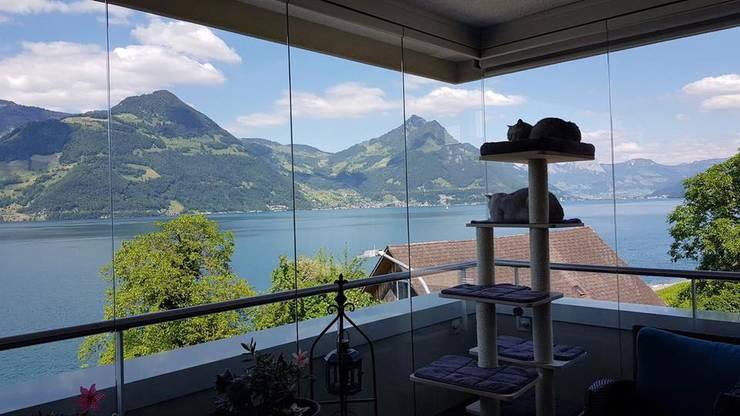 «Zuhause auf dem Balkon ists am schönsten. Grüsse vom Vierwaldstättersee!» Schreibt uns eine Leserin.