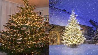 Wir suchen den schönsten Weihnachtsbaum - das sind die Teilnehmer