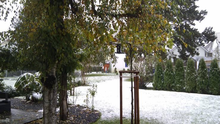 Schnee bis in die Niederungen, im Bild Oftringen (SO).