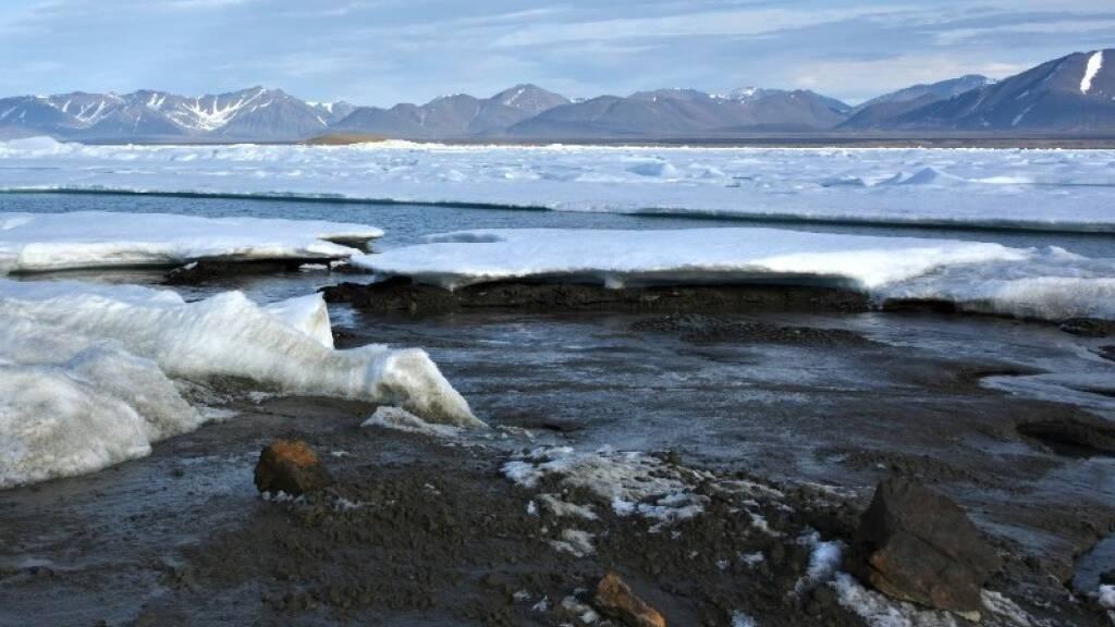 Die noch namenlose Insel an der Nordküste Grönlands besteht hauptsächlich aus Schlick und Kies.