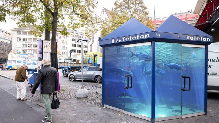 Ein wohl nicht ganz ernst gemeinter, aber reizvoller Vorschlag Die Telefonkabinen am Barfi könnten zum Mini-Ozeanium umfunktioniert werden.