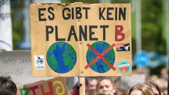 Der Rat sagte neben anderem Ja zur Schaffung eines Bio-Stadt-Labels als erster Kanton der Schweiz. (Symbolbild)