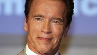 Vor einem möglichen Hollywood-Comeback will Schwarzenegger sein Privatleben regeln (Archiv)