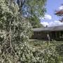 Michelle Krutz steht vor herabgefallenen Ästen, die durch den Tropensturm «Isaias» in ihrem Hinterhof liegen. Foto: Dave Zajac/Record-Journal/AP/dpa